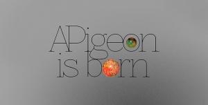 Apigeon is born
