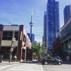 Vegfest Toronto © Kim Cayer-Roy