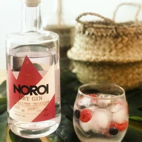 Dry Gin Petits Fruits - Distillerie NOROI