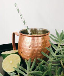 Cocktail Diplo Mule conçu avec le rhum Diplomático Mantuano